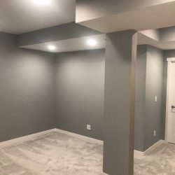 Professional Basement Renovation