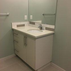 Bathroom Renovation Mahogany