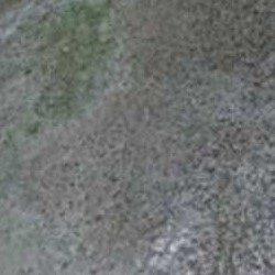 Concrete Stamp Skin Slab