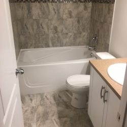 Everridge Bathroom in Basement